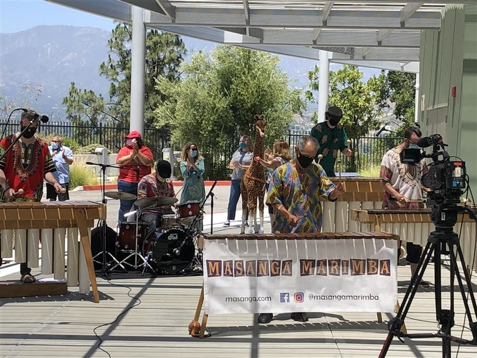 Massanga Marimbas Live-Stream Concert - Click here to watch!