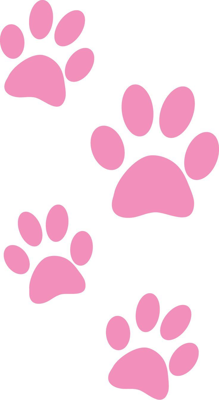 Pink Paws